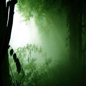 The NIMBUS Effect Vol2