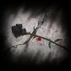 The Black Flower Session
